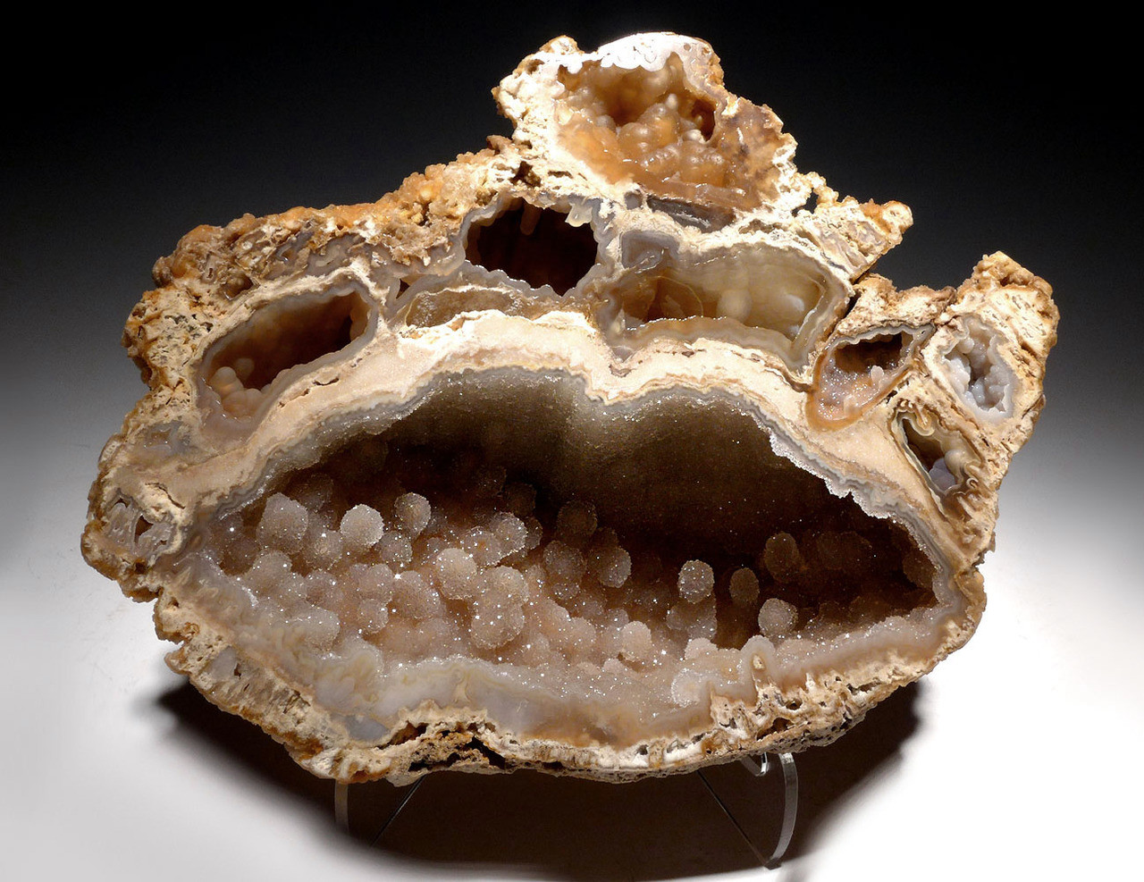 "PCOR003 - ULTRA-RARE LARGE ""DIAMOND CAVE"" FOSSIL AGATIZED CORAL COLONY GEODE - BEST OF A HUGE COLLECTION"