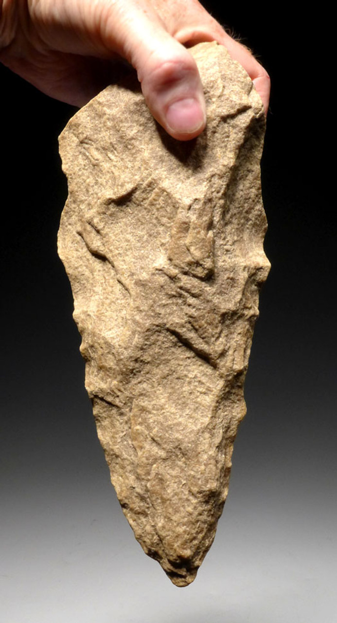 ACH247 - ENORMOUS MUSEUM GRADE MASTERPIECE AFRICAN ACHEULIAN HAND AXE FOR LARGE GAME BUTCHERING AND PRESTIGE