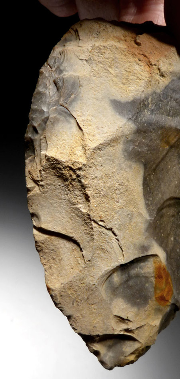 M382 - FINEST INVESTMENT CORDIFORM NEANDERTHAL MOUSTERIAN FLINT HAND AXE FROM FRANCE WITH STUNNING PIEBALD PATTERNS AND COLOR
