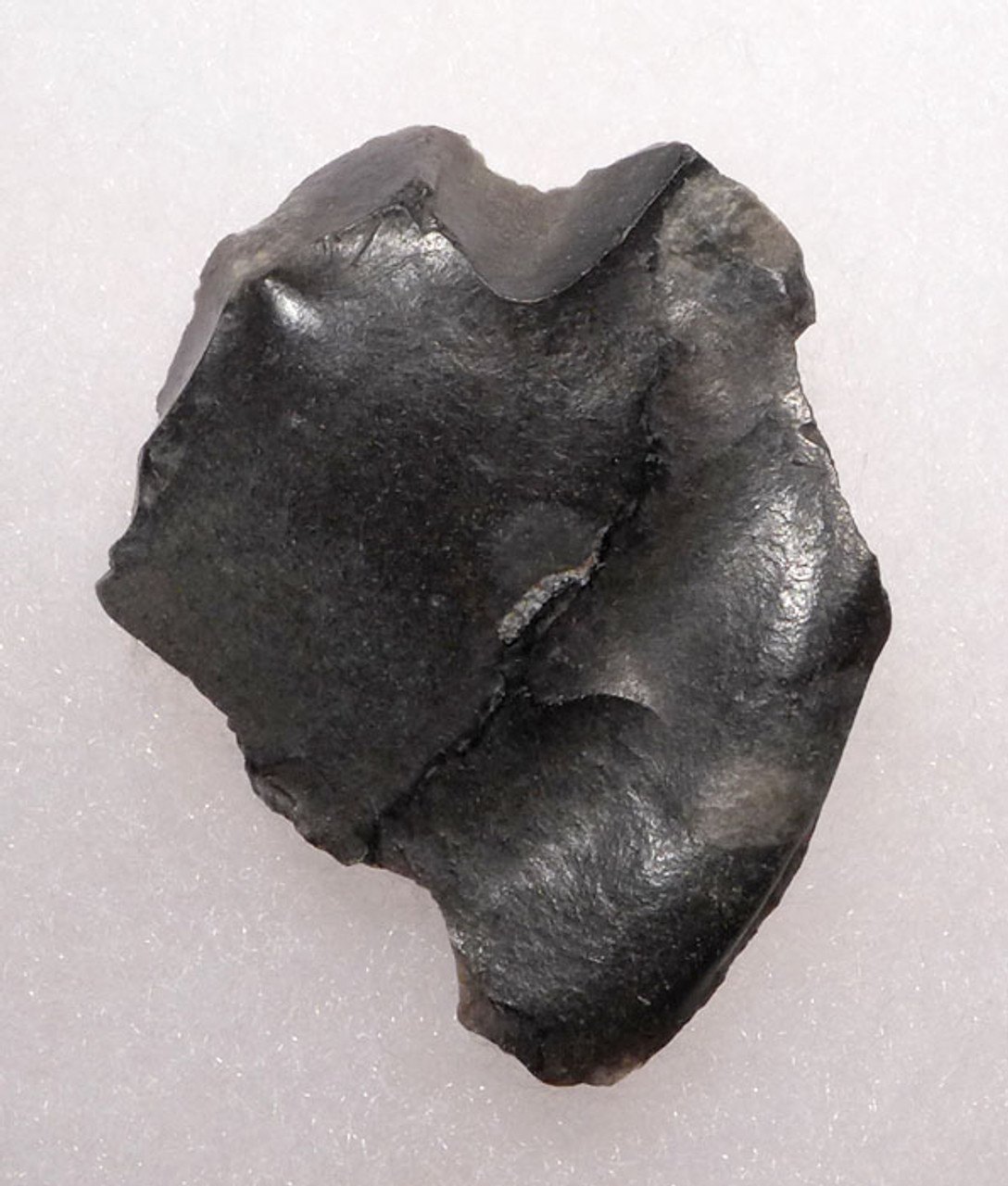 CL001 - EXTREMELY RARE CLACTONIAN FLAKE SCRAPER FROM NORTHERN EUROPE MADE BY HOMO ERECTUS