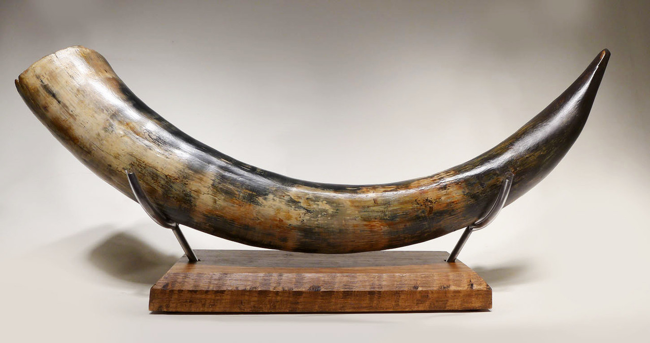 STUNNING ROBUST WOOLLY MAMMOTH TUSK OF BLUE IVORY FROM EUROPE *MT028