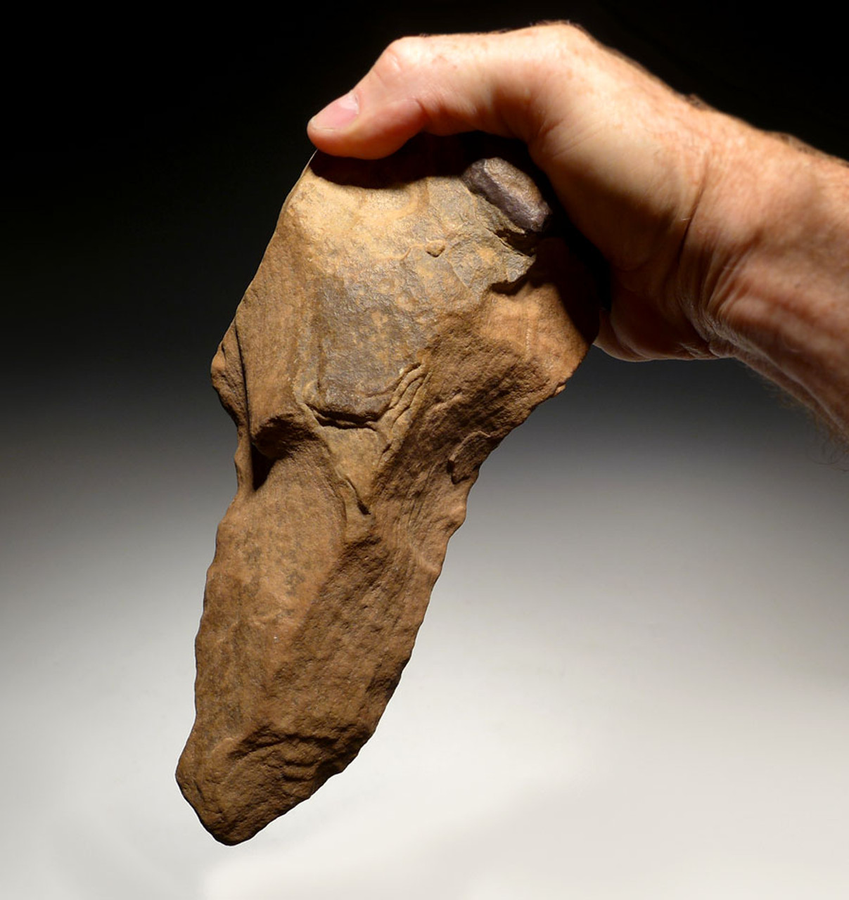 LARGE BONE-SMASHING PRESTIGE ACHEULEAN STONE PICK HAND AXE MADE BY HOMO ERECTUS (ERGASTER) WITH UNUSUAL GRIP FEATURE *ACH226