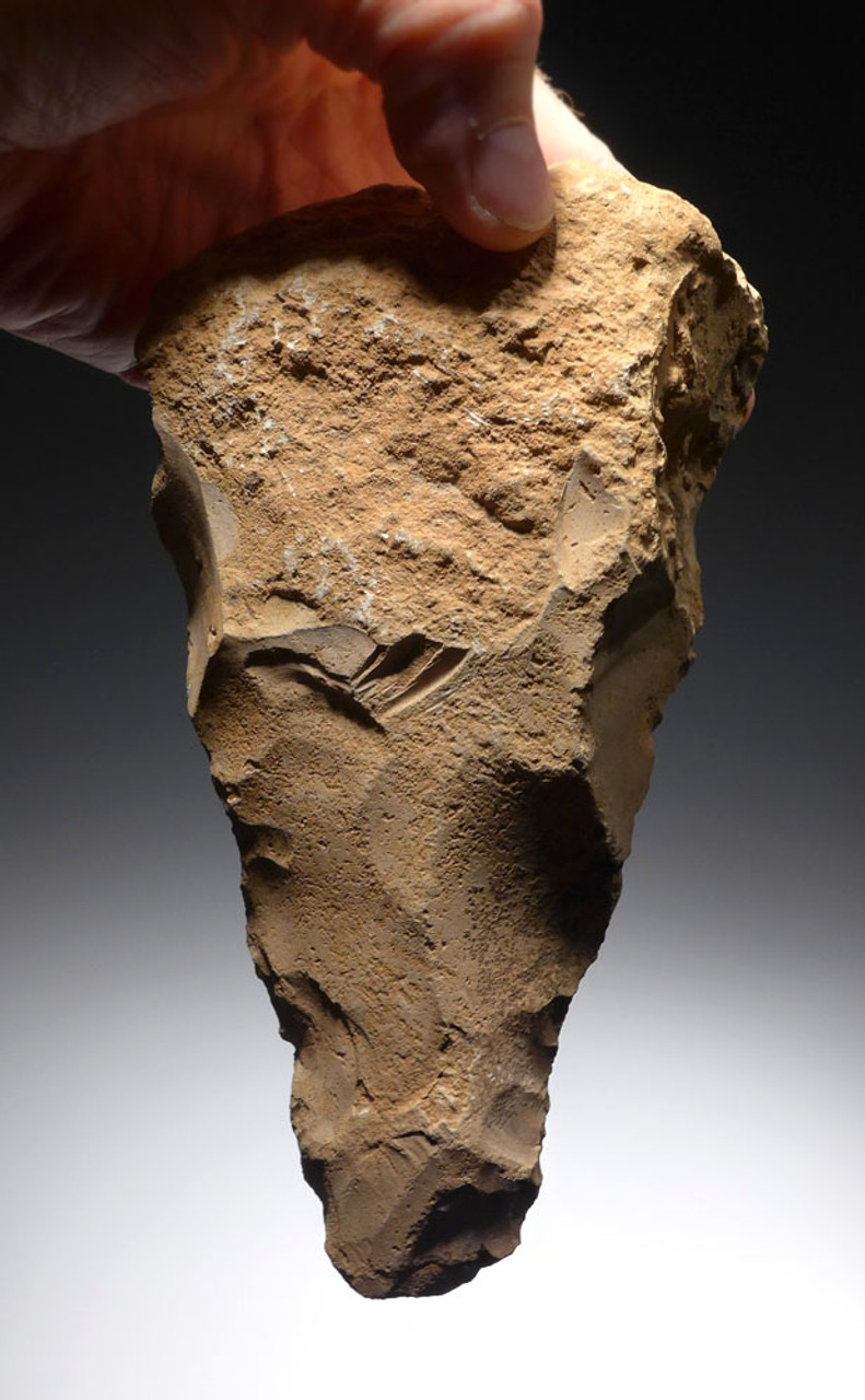 RARE ARABIAN DESERT EARLY MAN TRIANGULAR ACHEULEAN HAND AXE FROM JORDAN *ACH249
