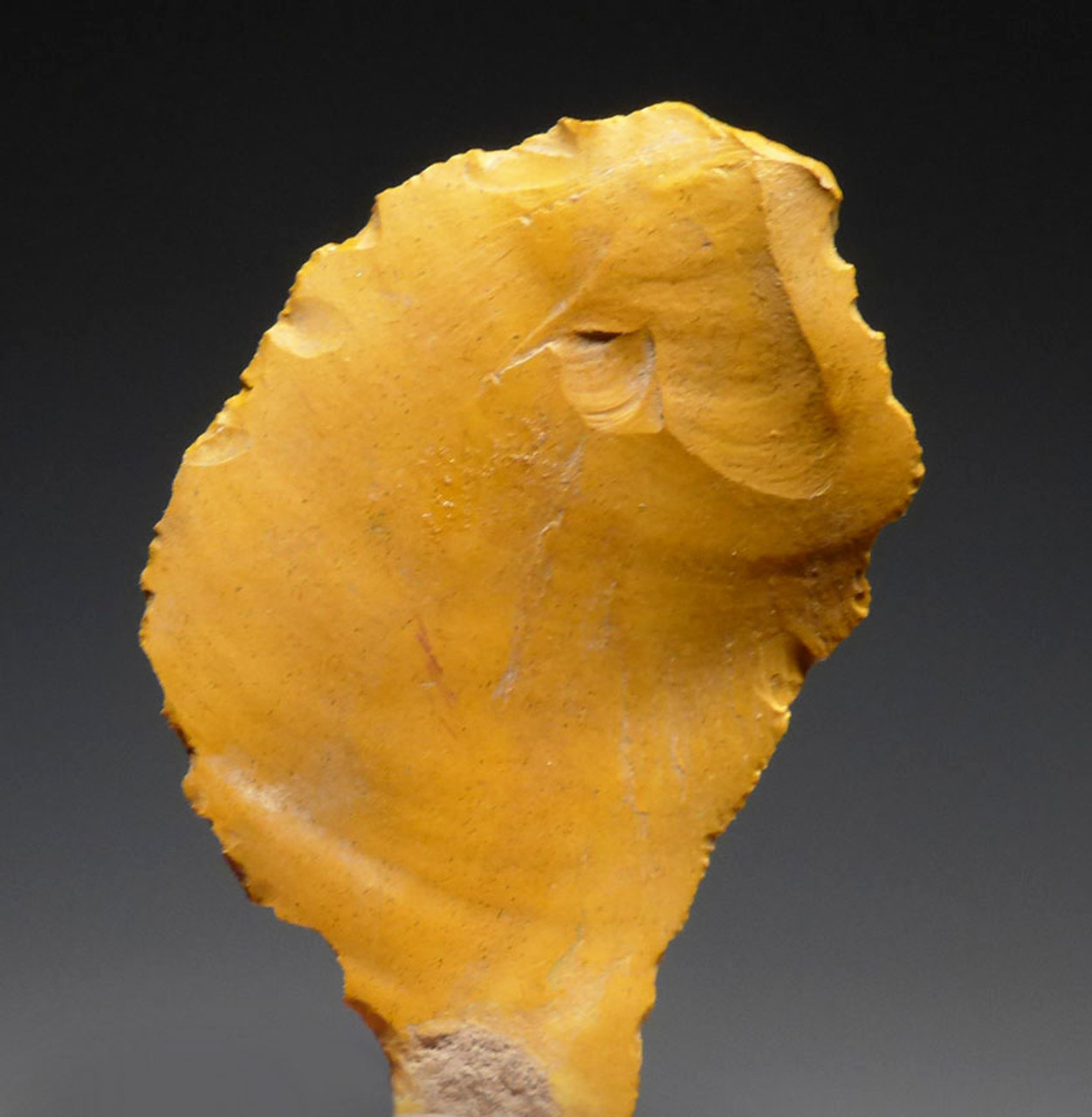 BRIGHT GOLDEN JASPER NEANDERTHAL MOUSTERIAN FLAKE STONE TOOL FROM FONTMAURE FRANCE *M407