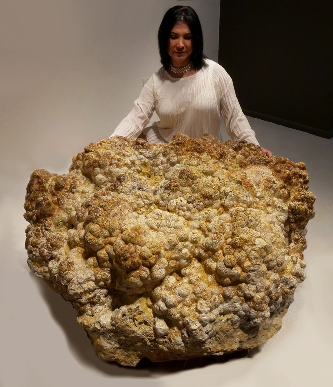 GIANT FOSSIL STROMATOLITE COLONY