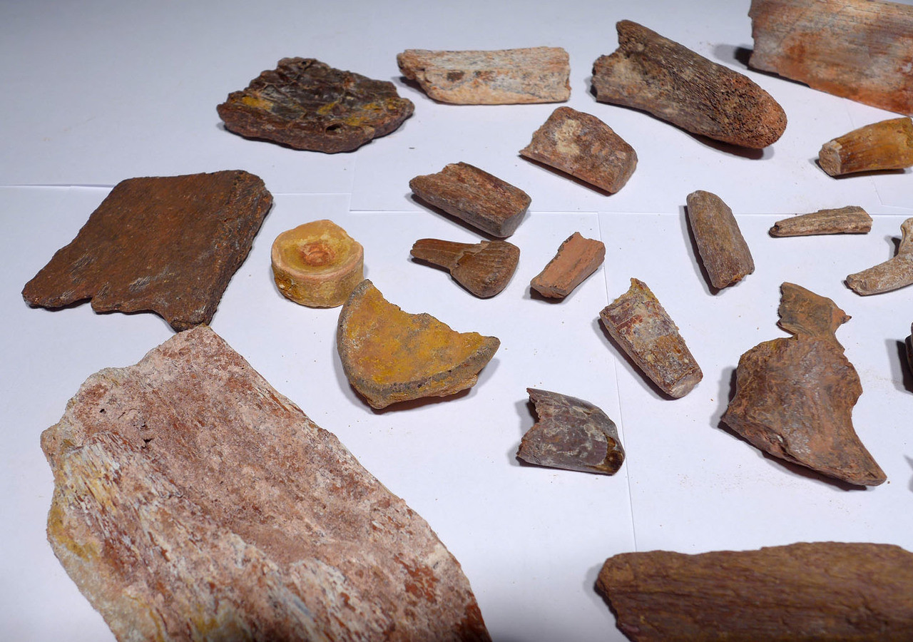 COLLECTION OF 30 FOSSIL DINOSAUR AND REPTILE TEETH AND BONES  *BONELOT13
