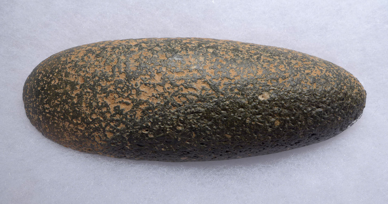 BEAUTIFUL TENEREAN NEOLITHIC GREEN VESICULAR BASALT POLISHED CELT AXE FROM THE TENERIAN PEOPLE OF THE GREEN SAHARA *CAP216