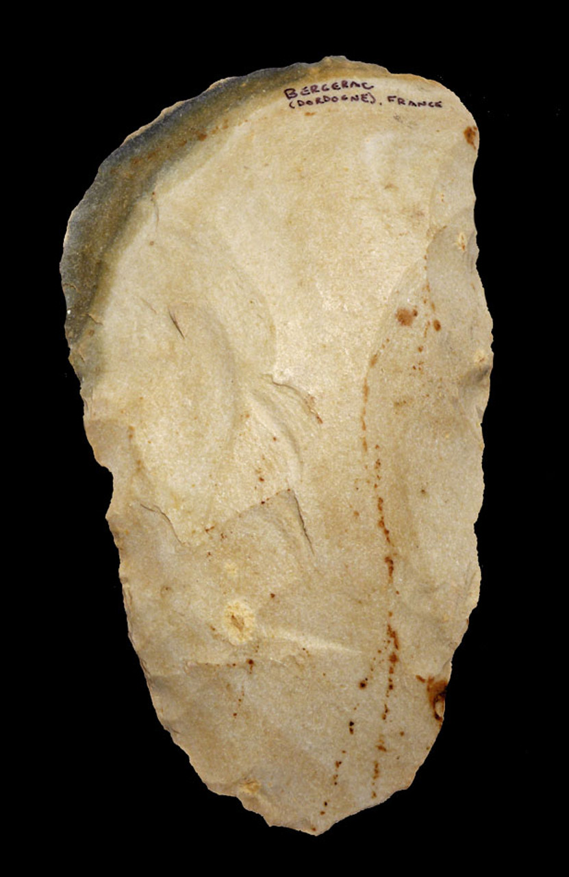 FINEST INVESTMENT GRADE LARGE NEANDERTHAL MOUSTERIAN HAND AXE FROM FRANCE WITH RARE COLORS AND PATTERNS *M385