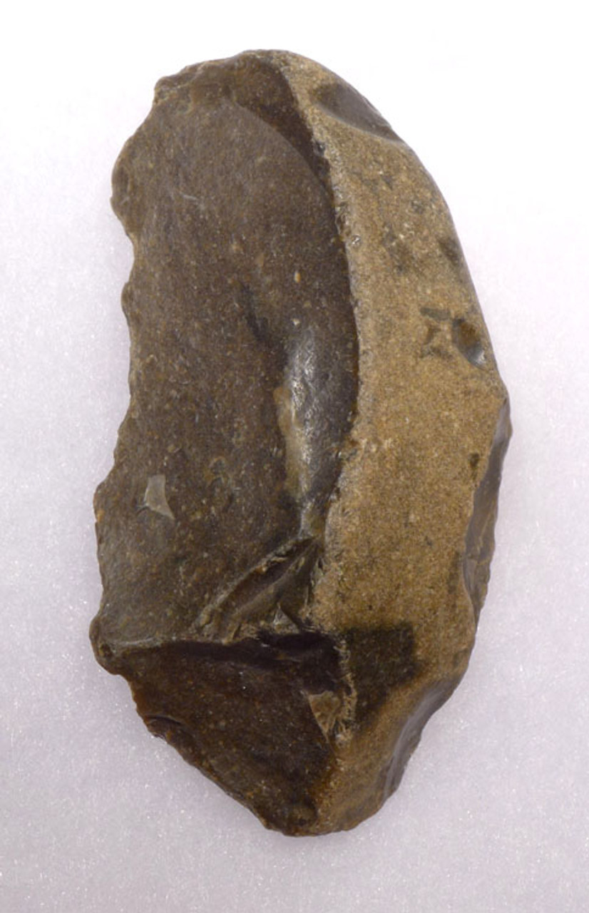 EXTREMELY RARE HOMO ERECTUS CLACTONIAN CHOPPER TOOL FROM EUROPE *CL004