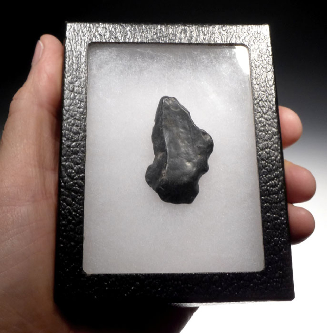 CLACTONIAN FLAKE SCRAPER MADE BY HOMO ERECTUS *CL003