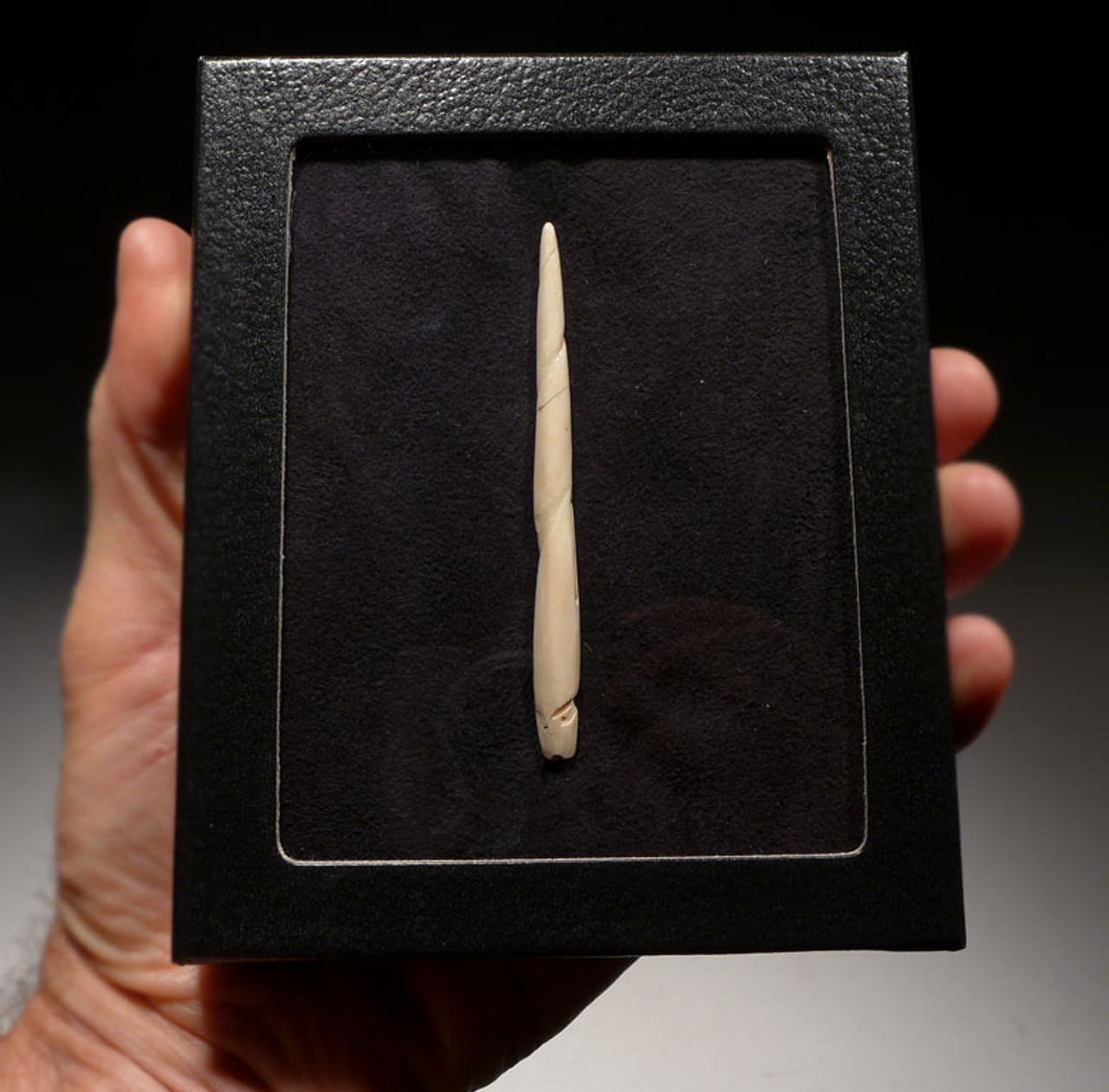 AZTEC PRE-COLUMBIAN BONE BLOOD-LETTING PIERCING NEEDLE *PC246