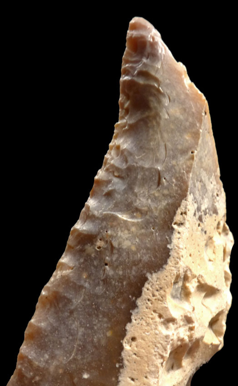 FINEST LARGE CAPSIAN NEOLITHIC FLINT KNIFE AND SAW FLAKE TOOLS FROM AFRICA *CAP186