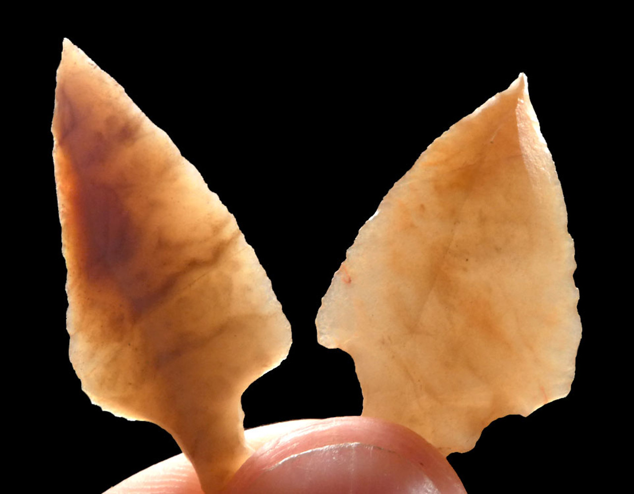PAIR OF CHOICE UNIFACIAL AFRICAN CAPSIAN NEOLITHIC ARROWHEADS *CAP208