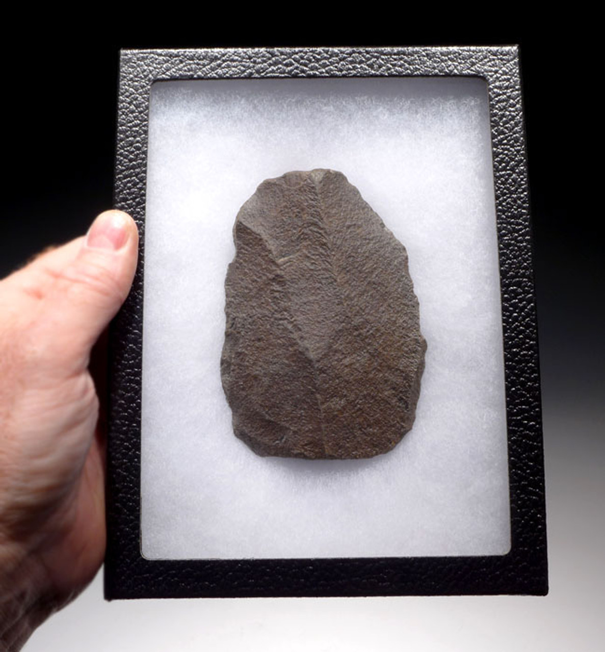 HOMO ERECTUS STONE AGE SCRAPER TOOL FROM THE ACHEULEAN PERIOD OF AFRICA *ACH187