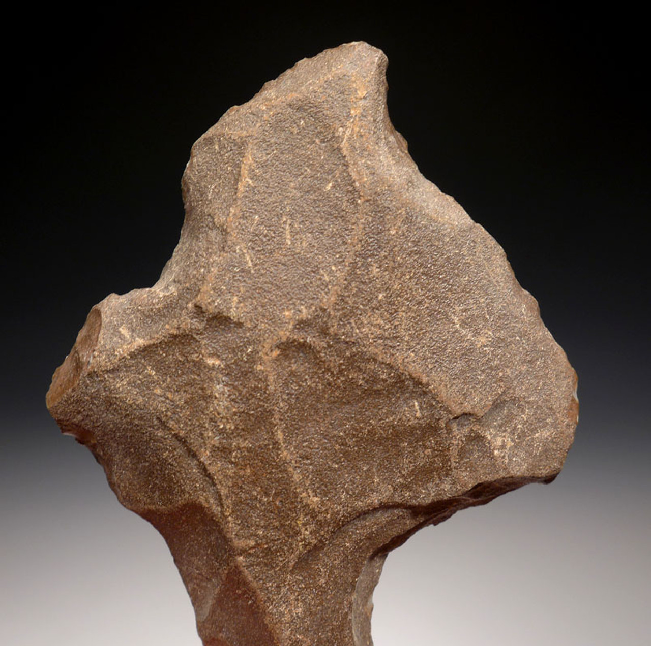 EARLIEST KNOWN ARROWHEAD - LARGE MIDDLE PALEOLITHIC ATERIAN TANGED POINT *AT091