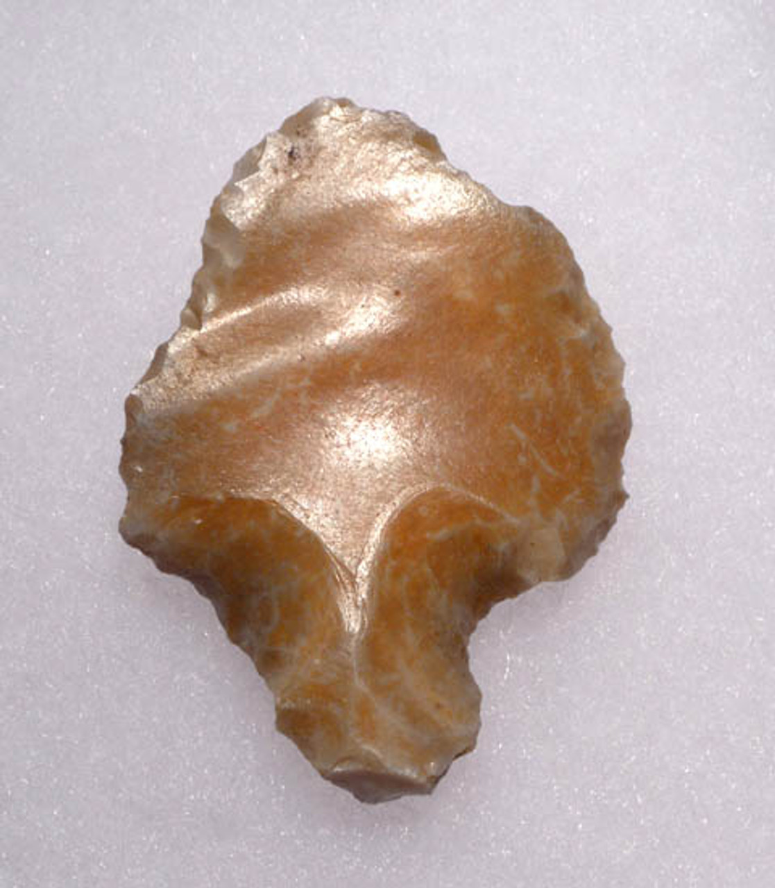 PRIMITIVE MAN FIRST ARROWHEAD MIDDLE PALEOLITHIC ATERIAN TANGED POINT *AT063
