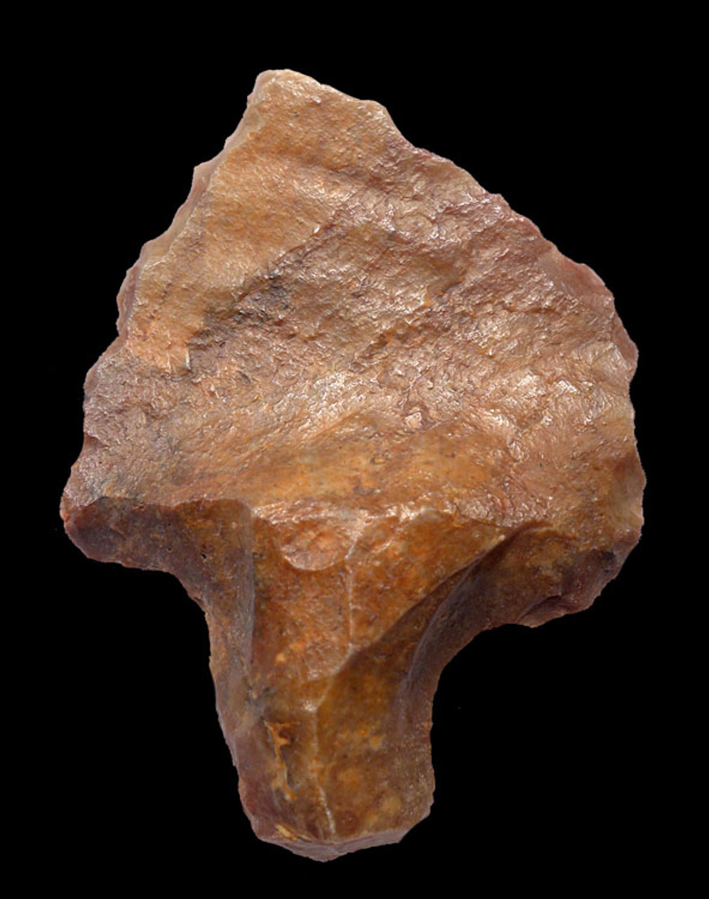 OLDEST ARROWHEAD ATERIAN TANGED POINT