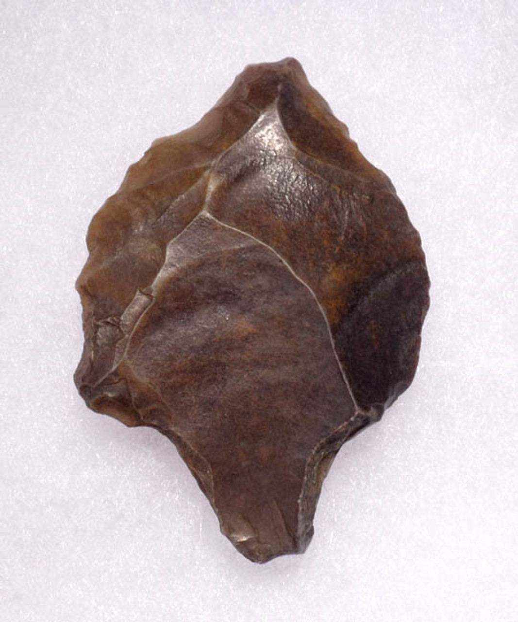 OLDEST TANGED ARROWHEAD