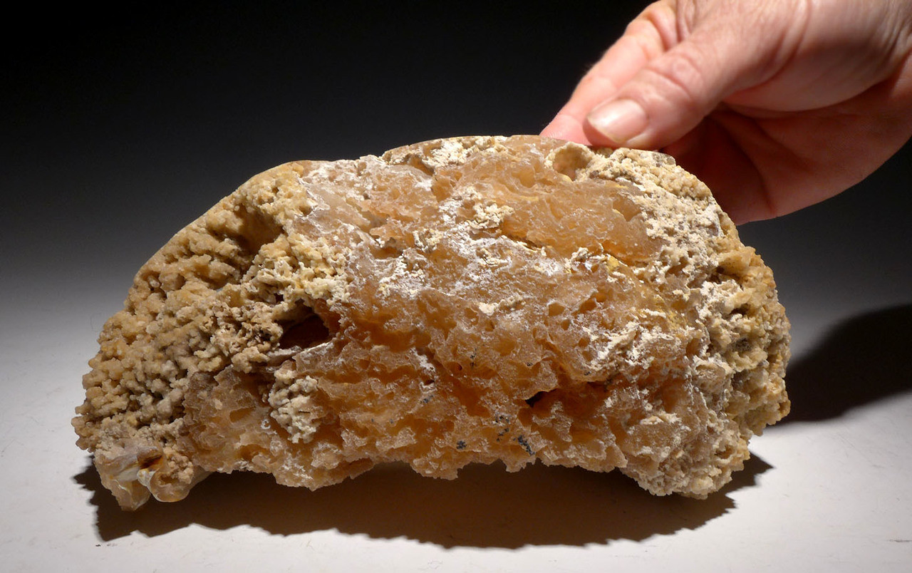 "ULTRA-RARE LARGE ""DIAMOND CAVE"" FOSSIL AGATIZED CORAL COLONY GEODE - BEST OF A HUGE COLLECTION *PC0R004"