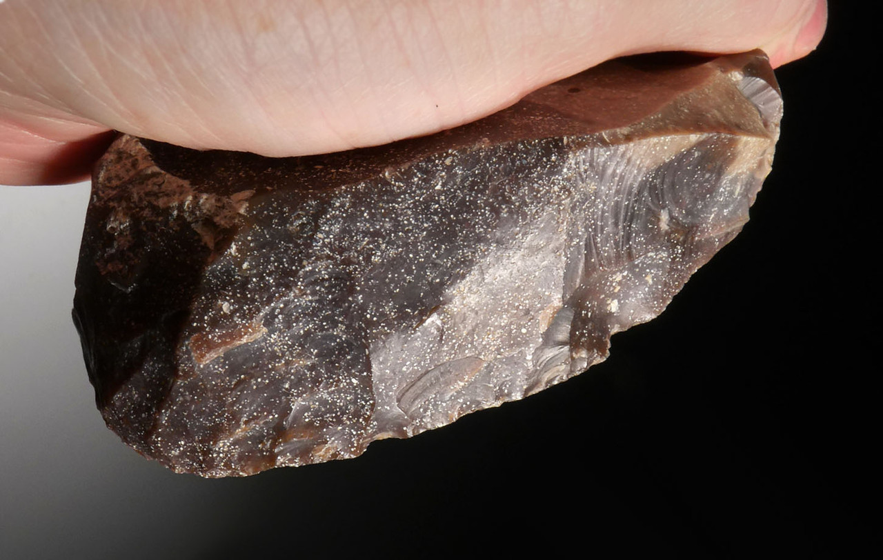 GIANT FINEST UNIFACIAL FLINT SCRAPER FROM THE AFRICAN CAPSIAN NEOLITHIC *CAP223