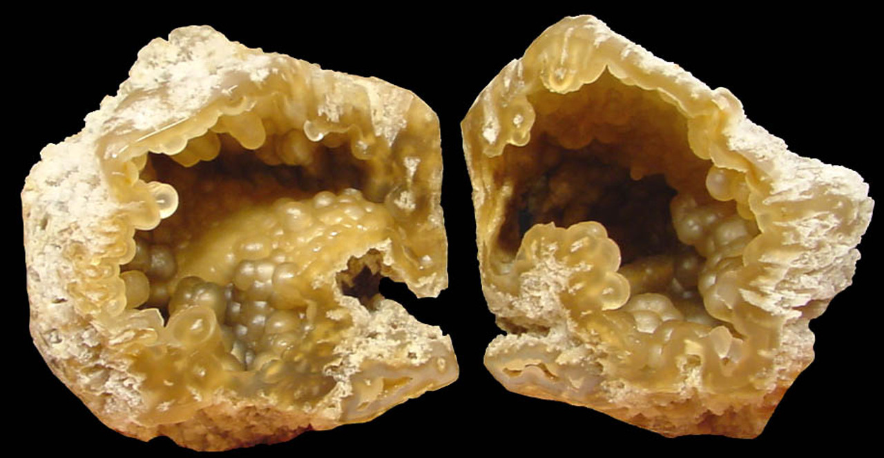 SLICED BOTRYOIDAL AGATIZED CORAL COLONY GEODE WITH BOTH HALVES *COR-070