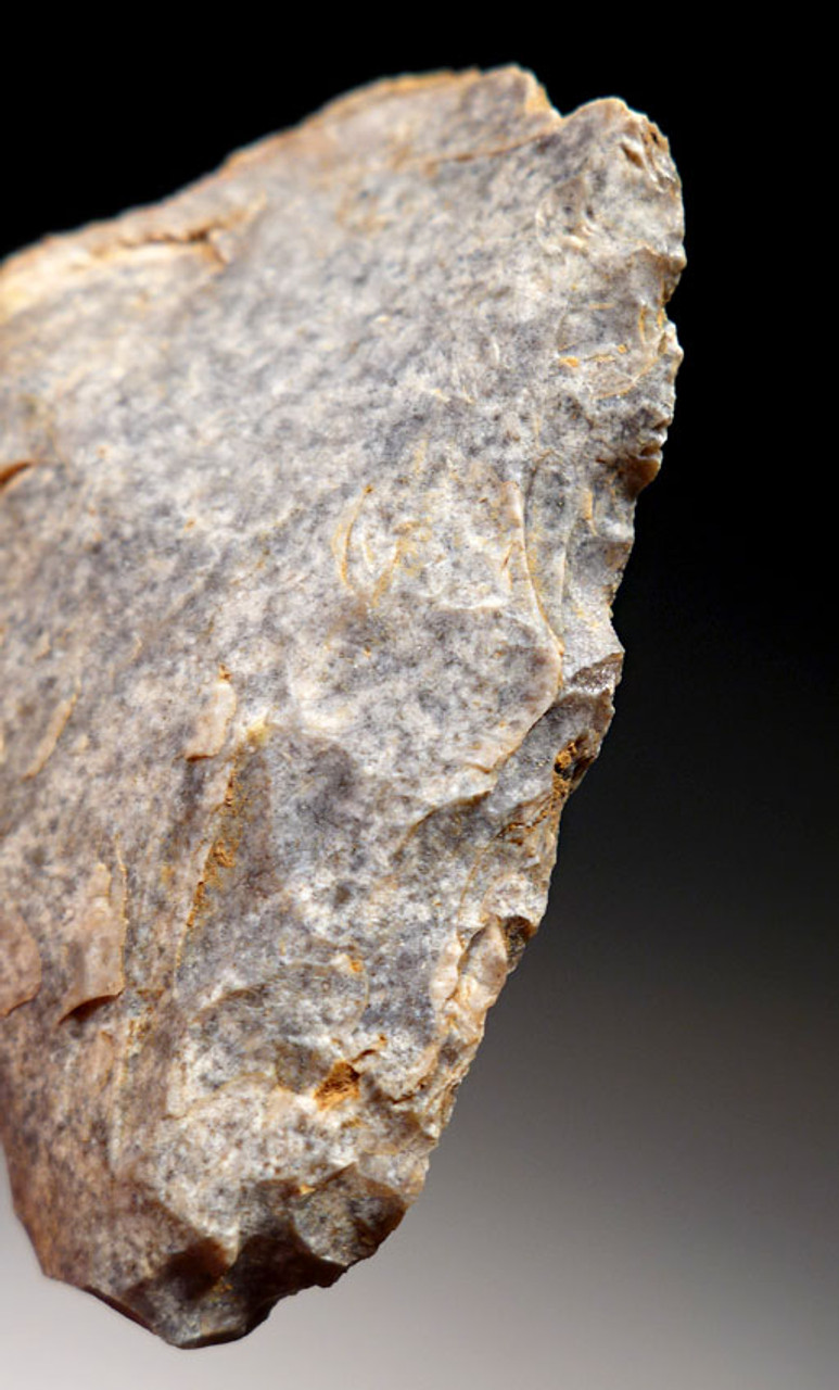 EXCEPTIONAL NEANDERTHAL MOUSTERIAN SIDE SCRAPER FLAKE TOOL FROM FRANCE WITH QUINA FLAKING  *M372