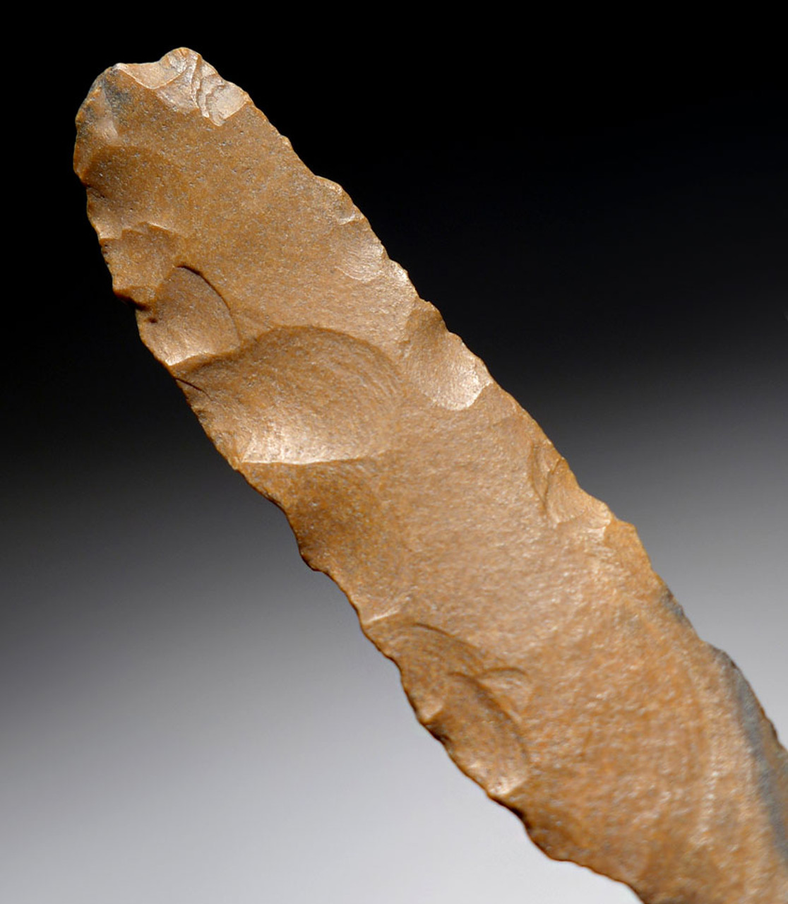 EGYPTIAN NEOLITHIC PREDYNASTIC FLINT BLADE STONE TOOLS OF TWO DIFFERENT TYPES  *CAP243