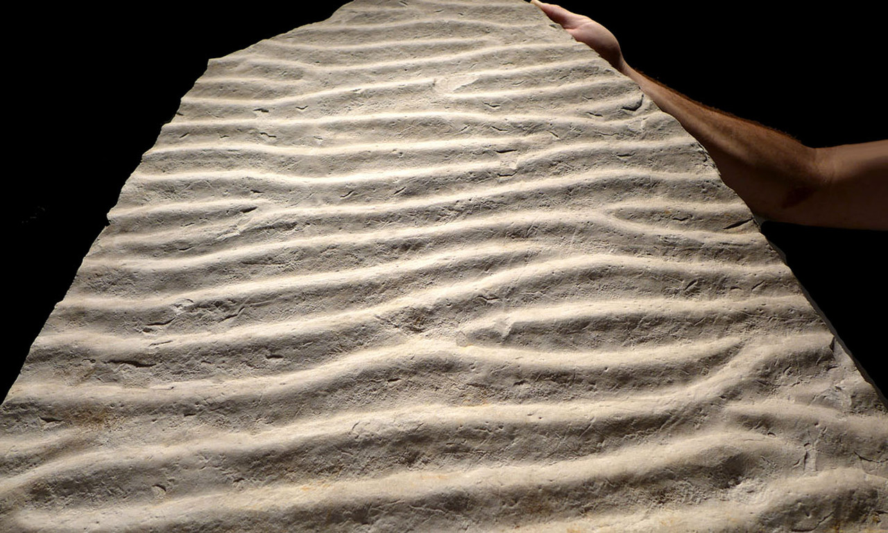 INTERIOR DESIGN FOSSIL OF A PREHISTORIC OCEAN FLOOR WITH WAVE ACTION RIPPLES  *FXR006