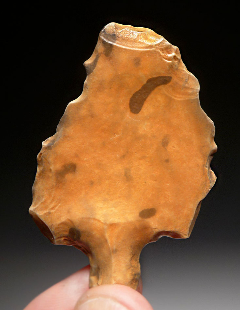SUPERB COLORFUL EARLIEST KNOWN TANGED ARROWHEAD - MIDDLE PALEOLITHIC ATERIAN POINT *AT102