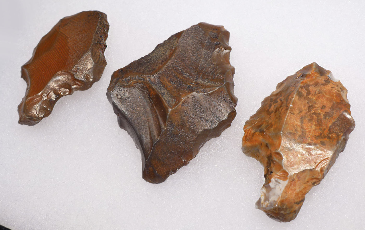 THREE EARLY MAN ATERIAN TANGED POINTS ONE OF PETRIFIED WOOD - OLDEST ARROWHEADS  *AT096