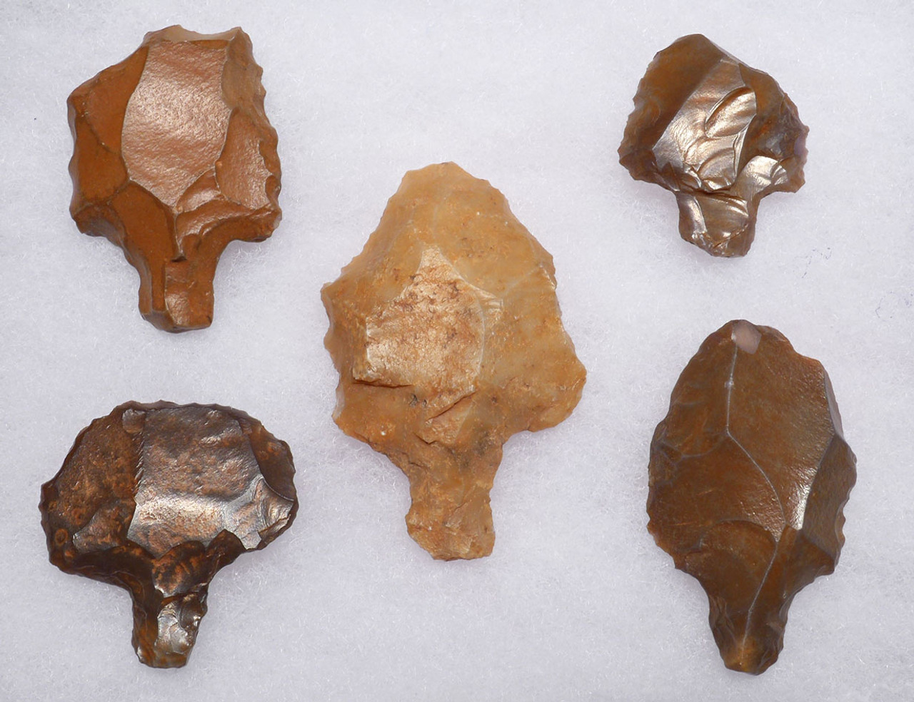 FIVE EARLY MAN ATERIAN TANGED POINTS ONE OF PETRIFIED WOOD - OLDEST ARROWHEADS  *AT093