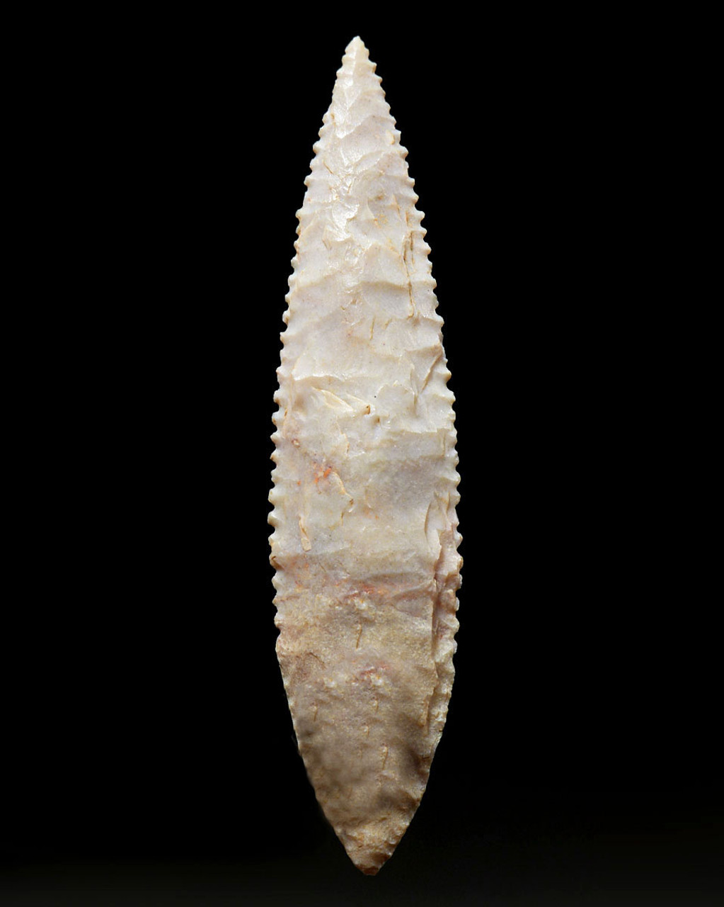 FINEST MICRO SERRATED WILLOW LEAF ARROWHEAD OF THE CAPSIAN AFRICAN NEOLITHIC  *CAP254