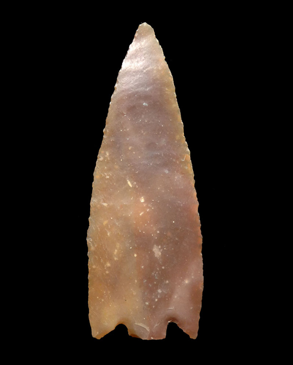 BEST OF THE BEST CAPSIAN AFRICAN NEOLITHIC SUPER THIN UNIFACIAL DELTA BARBED ARROWHEAD  *CAP257