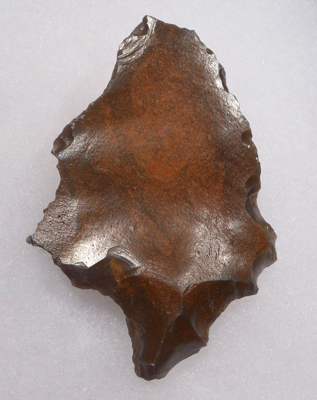 EARLY MANS FIRST ARROWHEAD - MIDDLE PALEOLITHIC ATERIAN TANGED POINT  *AT104