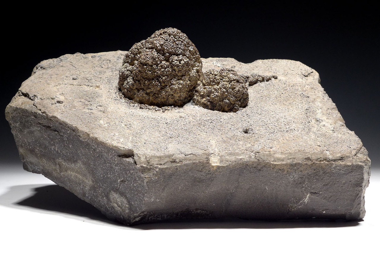 LARGE NATURAL FORM FOSSIL PERMIAN STROMATOLITE BACTERIA BALL COLONY  *STR555