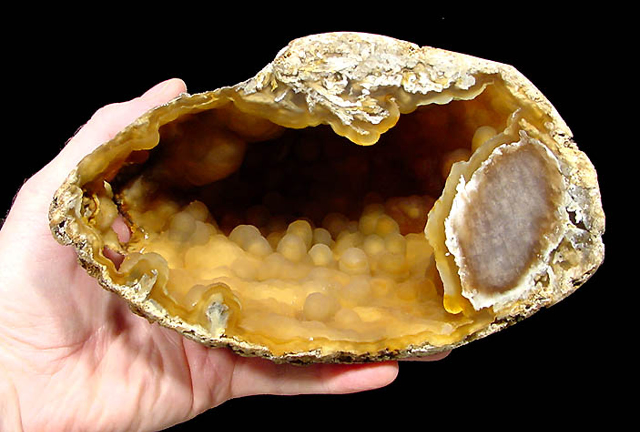 AGATIZED CORAL GEODE HALF WITH LARGE BOTRYOIDAL STRUCTURES LINING INTERNAL CAVITY  *COR-040