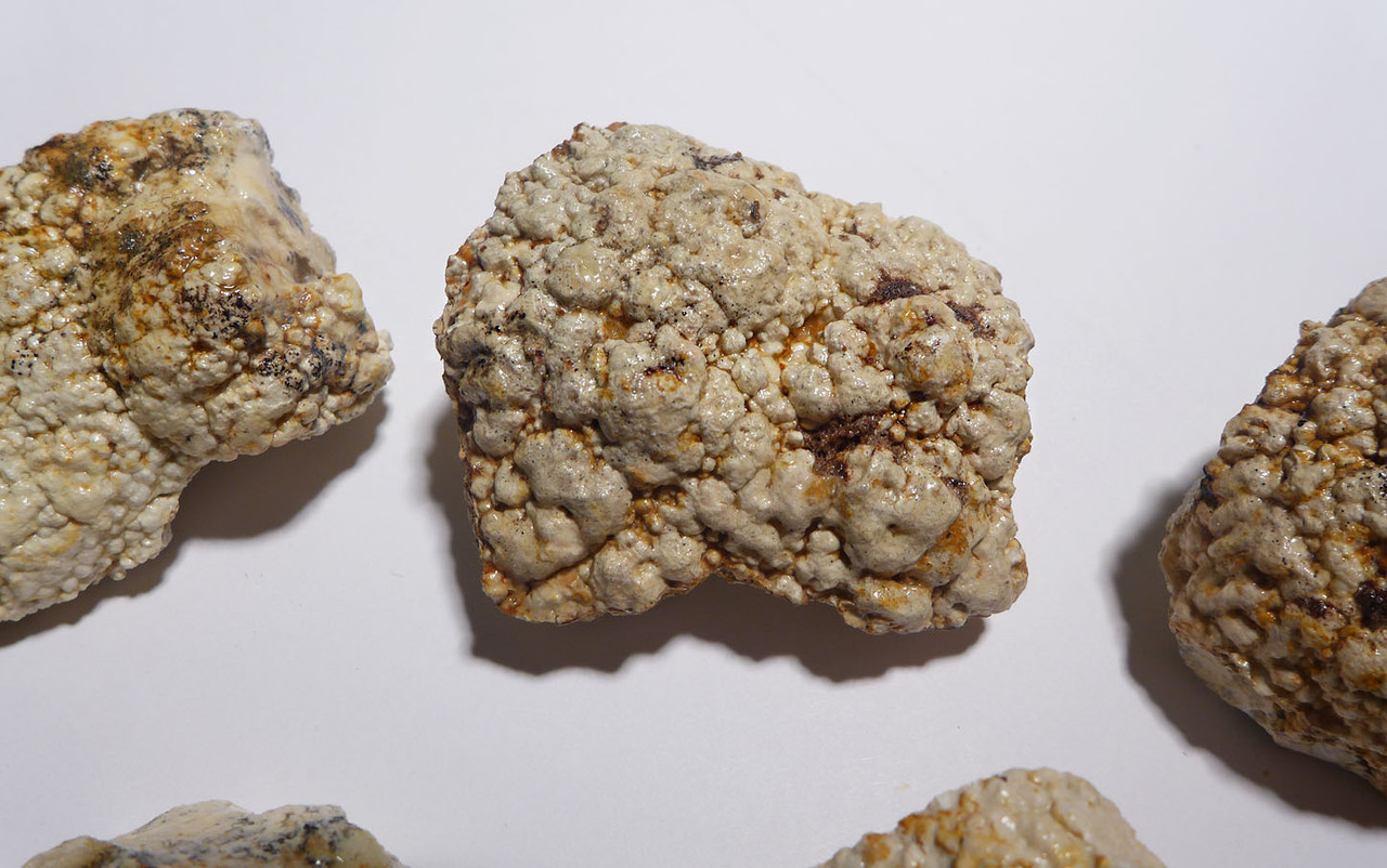 7 NATURAL FORM FOSSIL OLIGOCENE BACTERIA BALL STROMATOLITES FROM A PREHISTORIC LAKE   *STR586