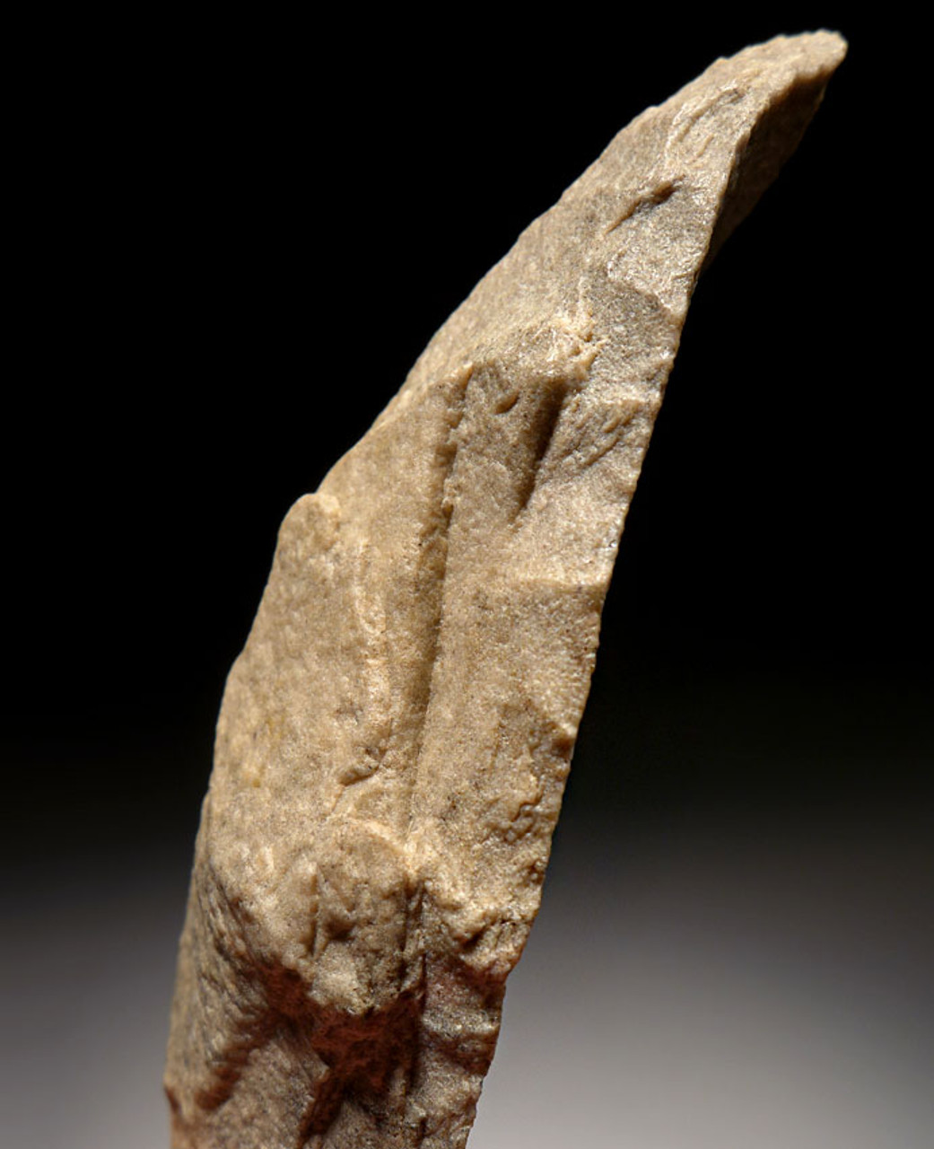 RARE SUPERB LARGE HIGH-BACKED PRESTIGE BLADE FROM THE TENERIAN AFRICAN NEOLITHIC MADE BY THE PEOPLE OF THE GREEN SAHARA *CAP195