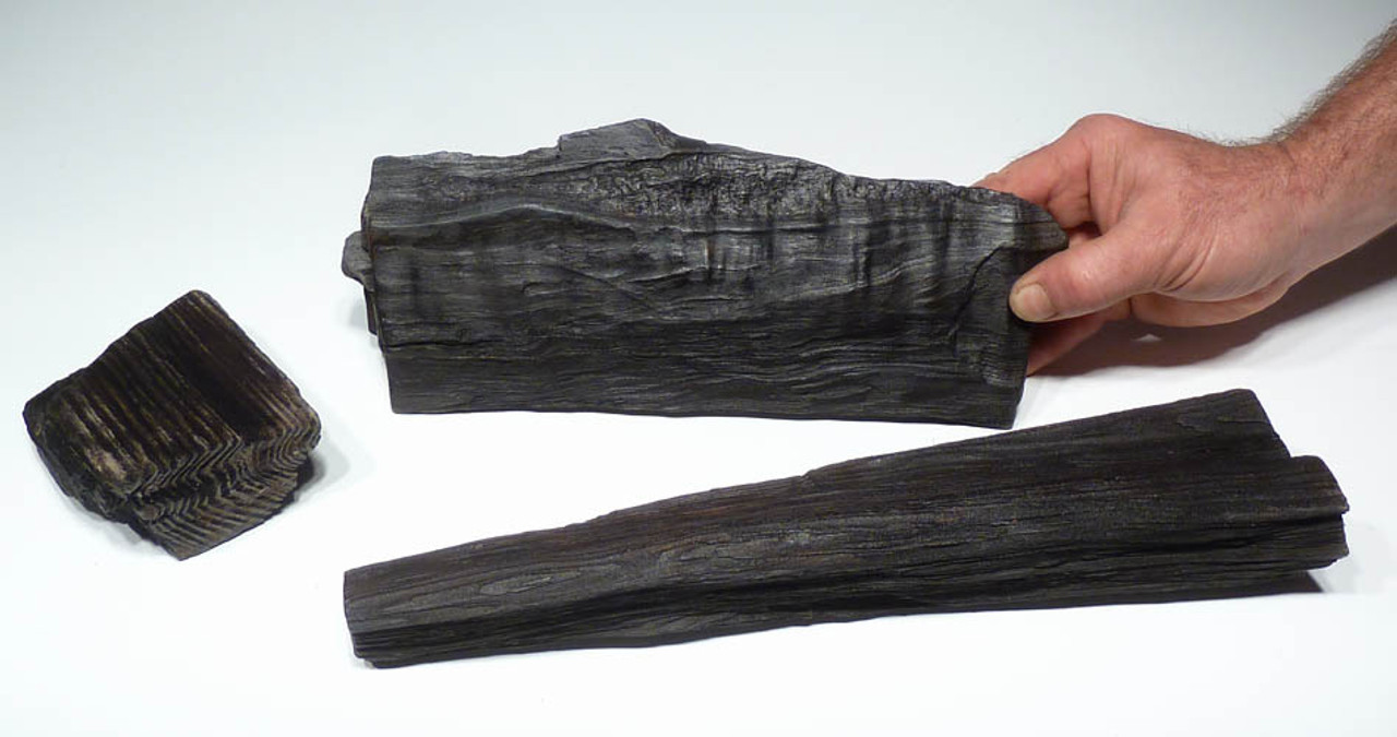 SET OF 3 NATURAL PETRIFIED WOOD PIECES FROM THE MIOCENE WITH SUPERB LIFELIKE DETAIL AND GRAIN  *PL060