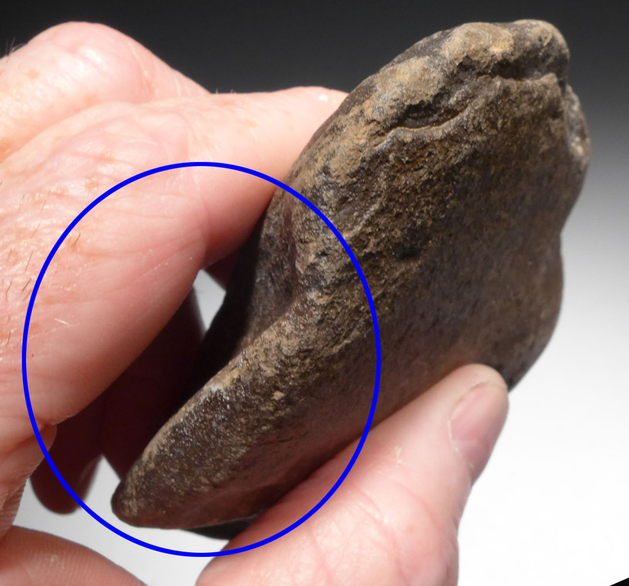 EARLY MAN AMYGDALOID HAND AXE OF THE ACHEULEAN TRADITION FROM LOWER PALEOLITHIC AFRICA  *ACH421