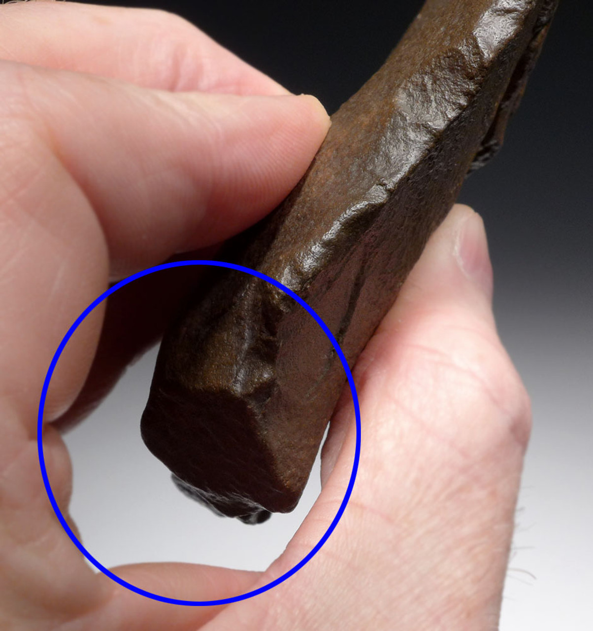 DELICATE HOMO ERECTUS (ERGASTER) HAND AXE OF THE ACHEULEAN WITH SHARP TIP  *ACH433