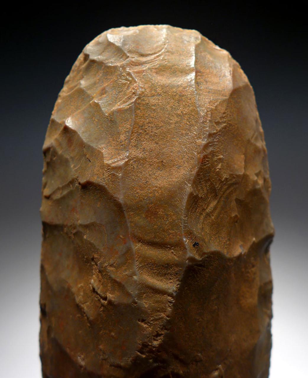 MAXIMUM SIZE FINEST CAPSIAN AFRICAN NEOLITHIC KNAPPED CELT WAR AXE   *CAP265