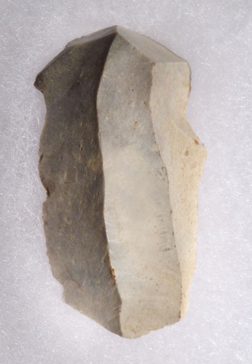 END SCRAPER MADE BY CRO MAGNON MAN FROM THE FAMOUS UPPER PALEOLITHIC AURIGNACIAN LA ROCHETTE CAVE IN FRANCE  *UP045