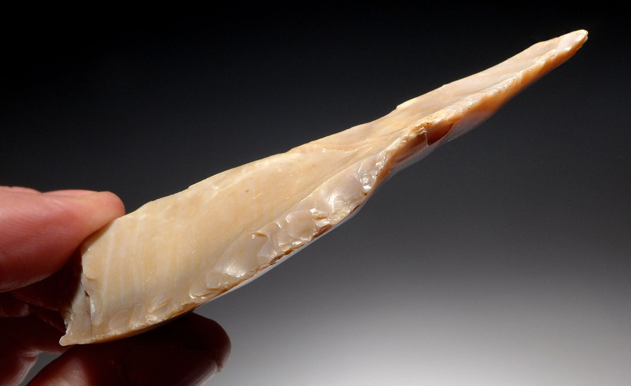 FINEST LARGE CAPSIAN NEOLITHIC FLINT BORER FLAKE TOOL FROM AFRICA  *CAP276