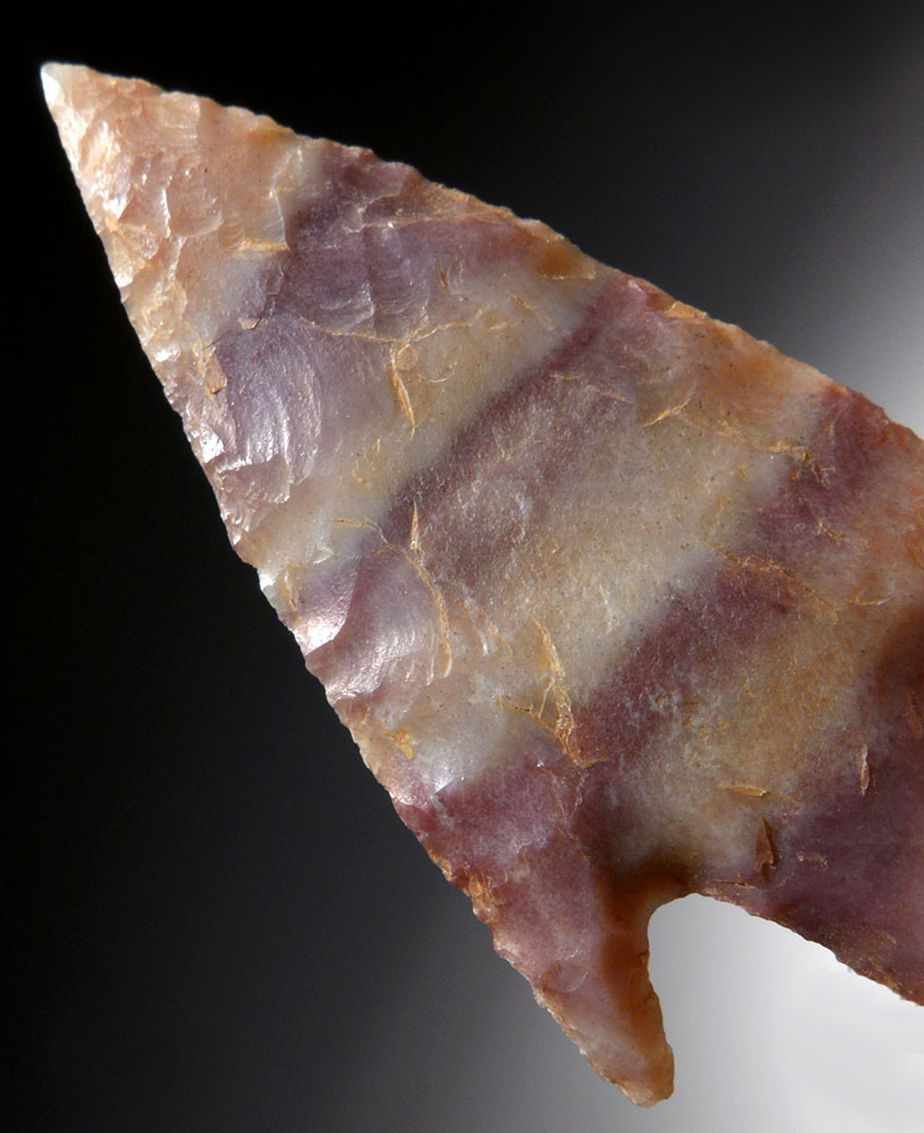 CANDY STRIPE CAPSIAN AFRICAN NEOLITHIC DELTA BARBED ARROWHEAD  *CAP296