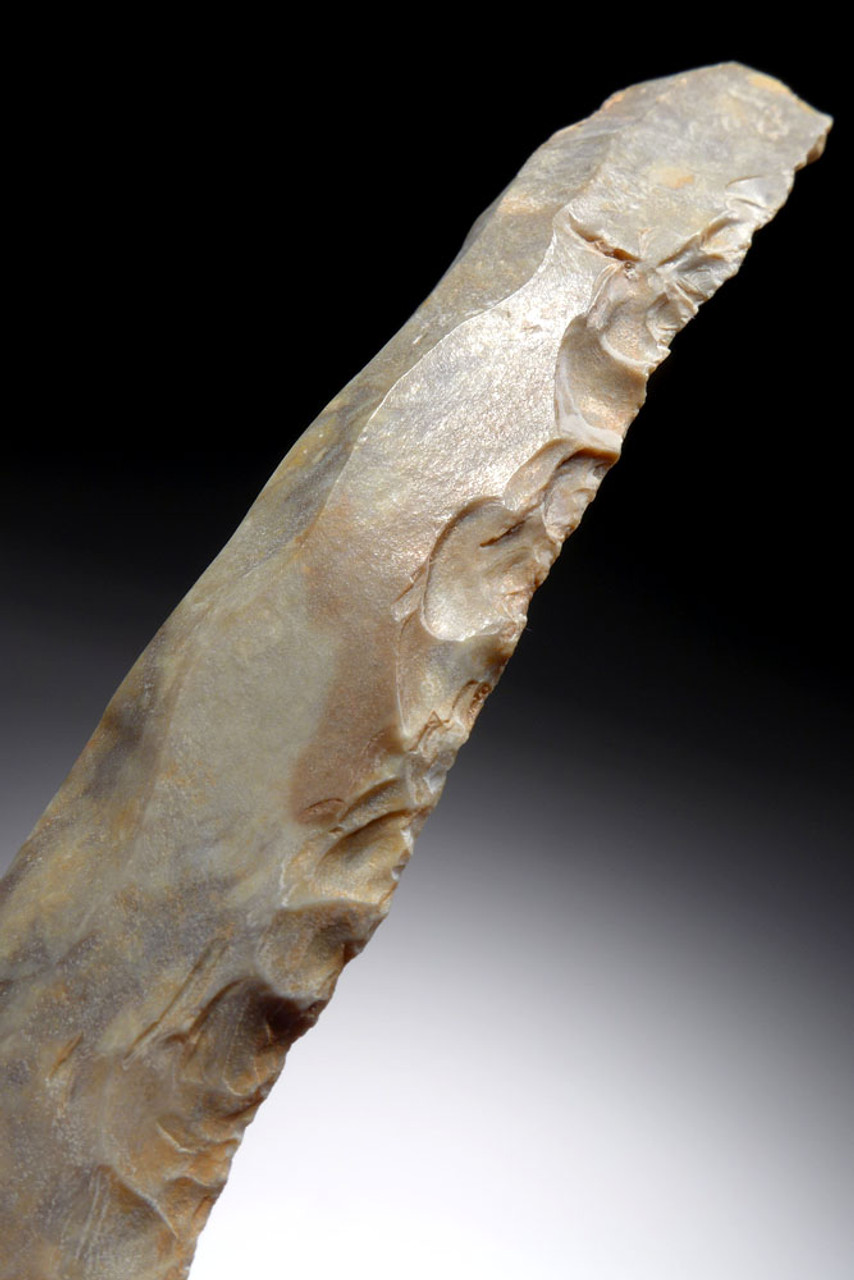 LARGE UNBROKEN CORE STRUCK STONE KNIFE BLADE FROM THE AFRICAN CAPSIAN NEOLITHIC *CAP298