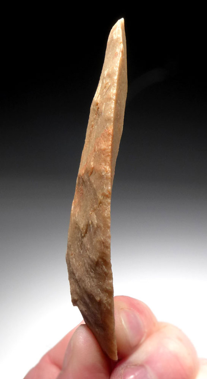 SUPERB LARGE PRESTIGE BROAD LEAF BLADE FROM THE TENERIAN AFRICAN NEOLITHIC PEOPLE OF THE GREEN SAHARA *CAP309