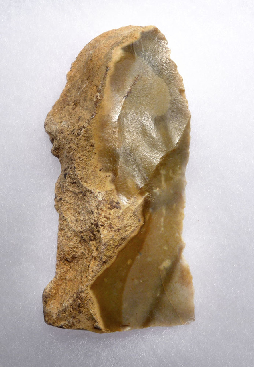 CHOICE FLINT NEANDERTHAL MOUSTERIAN NATURALLY BACKED KNIFE TOOL FROM CAEN FRANCE  *M439