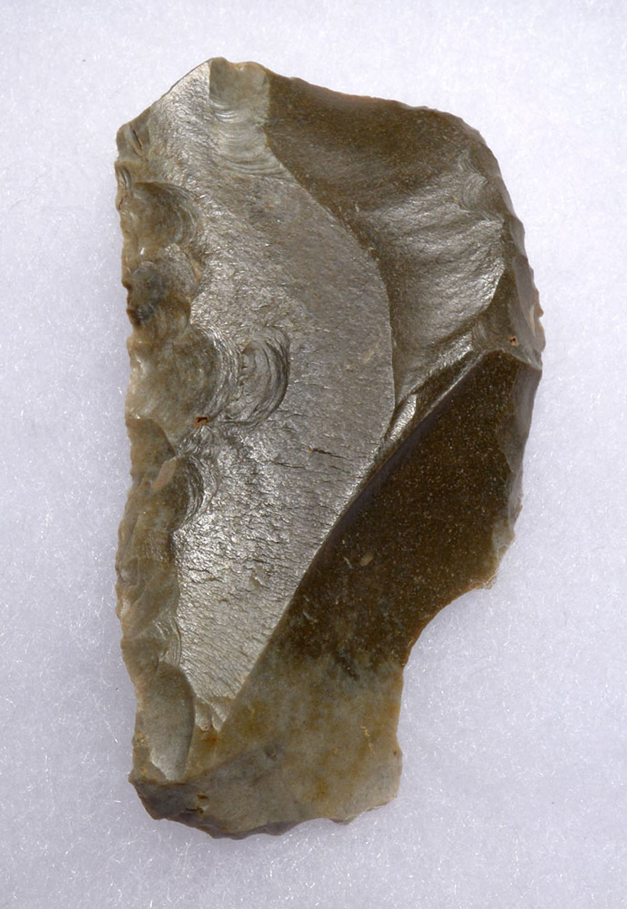 BEST OF THE COLLECTION - REMARKABLE NEANDERTHAL MOUSTERIAN HAFTED SIDE SCRAPER STONE TOOL FROM CAEN FRANCE  *M442