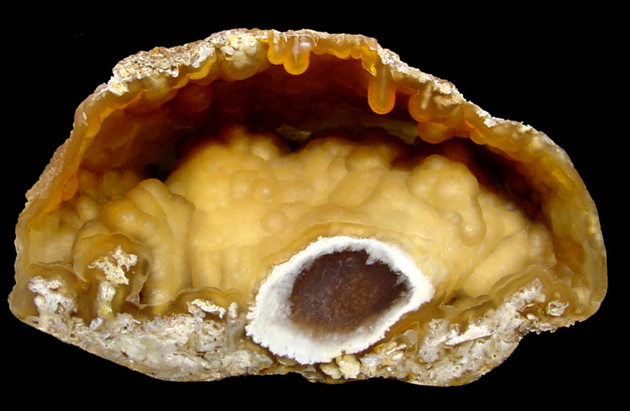 "COR-055 - AMAZING AGATIZED CORAL GEODE WITH ""EVIL EYE"" AND TRANSLUCENT AMBER BOTRYOIDAL INTERIOR"